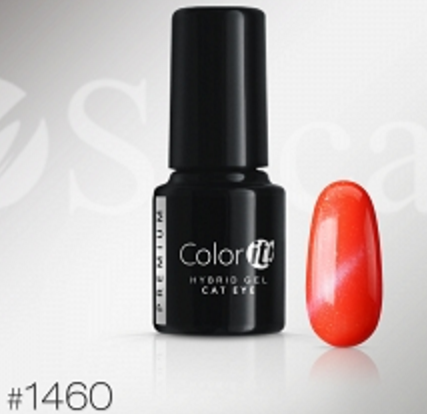 Color-it! Premium Hybrid gel 6gr. - Cat Eye Color #1460