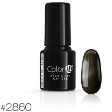 Color-it! Premium Hybrid gel 6gr. - Cat Eye Color #2860